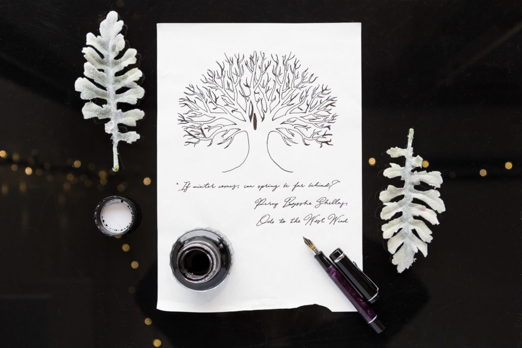 Illustration of tree drawn with Monteverde Onyx ink and a Conklin Purple Nights fountain pen