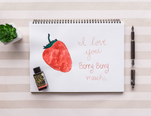Diamine Wild Strawberry with a TWSBI Precision: Monday Matchup Giveaway #183