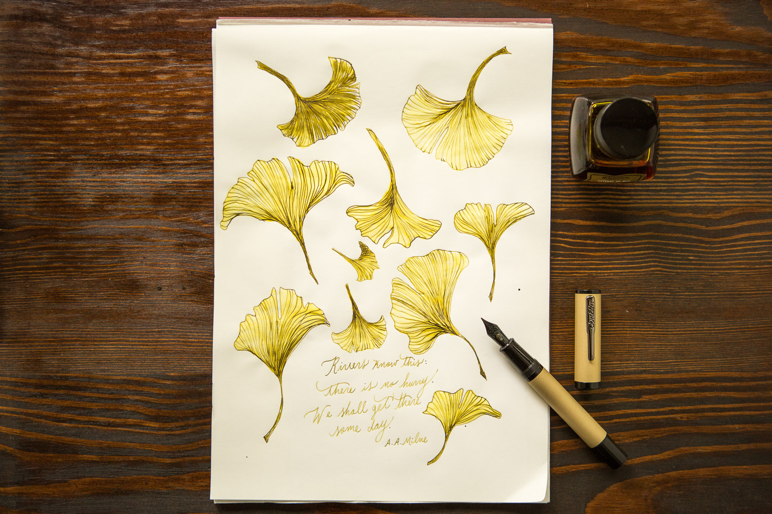 Gingko leaf illustration with a Conklin Nighthawk Brass Fountain Pen and Platinum Citrus Black ink.