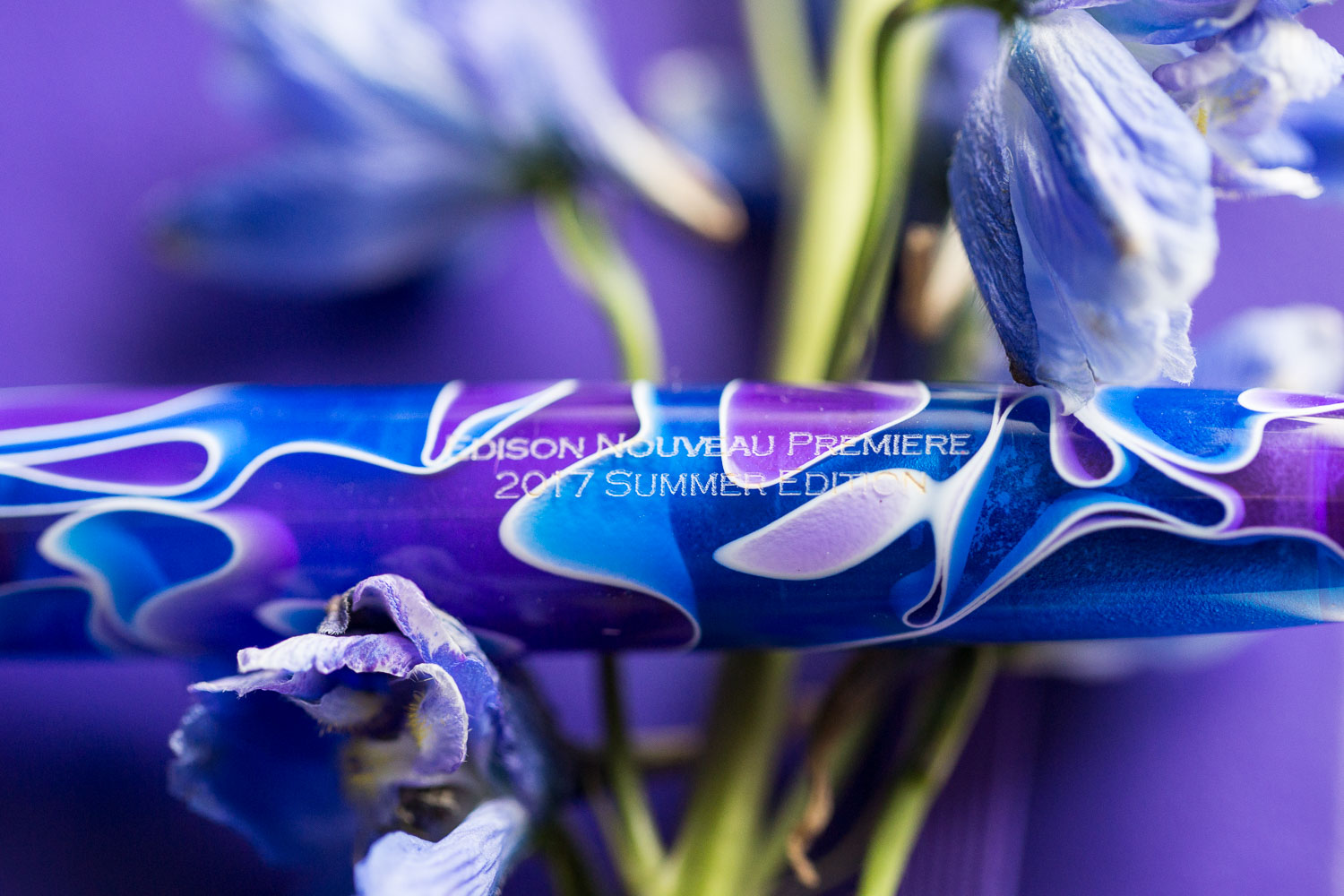 The Edison Nouveau Premiere Delphinium is a gorgeous combination of rich purple and bold blue with ribbons of white.